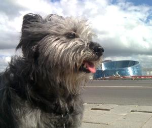 Astana, Cultural Centre
